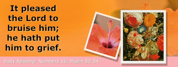 https://bibletruthpublishers.com/DailyLight/wp-content/uploads/dl-hdg-2021-255.jpg