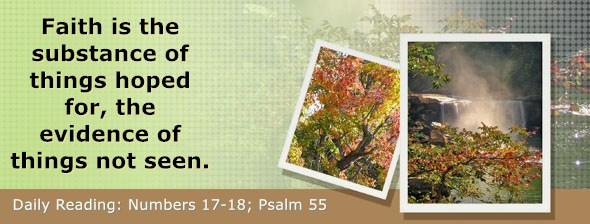 https://bibletruthpublishers.com/DailyLight/wp-content/uploads/dl-hdg-2021-257.jpg