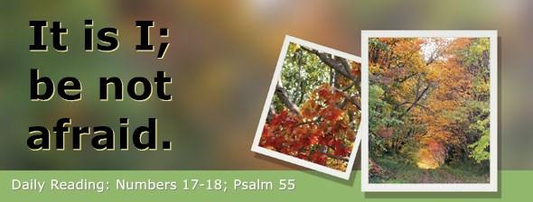 https://bibletruthpublishers.com/DailyLight/wp-content/uploads/dl-hdg-2021-258.jpg