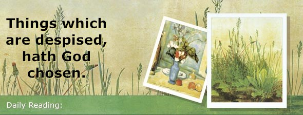 https://bibletruthpublishers.com/DailyLightEvening/wp-content/uploads/dl-hdg-2020-370.jpg