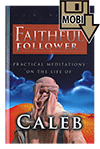 Faithful Follower: Practical Meditations on the Life of Caleb by James Nelson Hyland