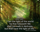 "10"" x 8"" Small Frameable Poster Text Card: (Sunlit Path) Jesus said, ""I am the Light . . . life."" John 8:12 (full verse) by IBH"