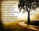 "10"" x 8"" Small Frameable Poster Text Card: (Lone Tree Lane) Trust in the Lord . . . paths. Proverbs 3:5-6 (full verses) by IBH"