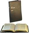 Parallel New Testament: Full-Notes Edition by King James Version/J.N. Darby