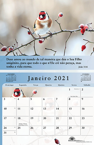 Portuguese The Gospel of Peace Scenic Appointment Calendar (#8235