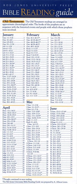 image regarding Printable Bible Reading Plan for Beginners named Bible Looking at Marketing consultant: Chronological Bible Looking through System, A.A.