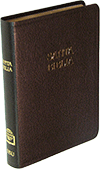 Spanish SBU Santa Biblia Mediana: Tamano Manual, ABS 113241 by RV 1909 — OUT OF PRINT. SUGGESTED SUBSTITUTE IS #8081.