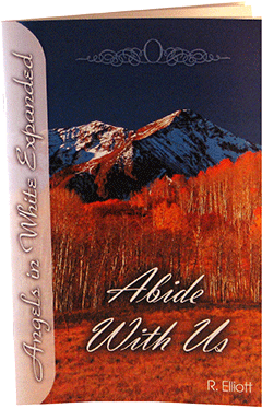 Abide With Us: Angels in White Expanded, #1 by Russell Elliott