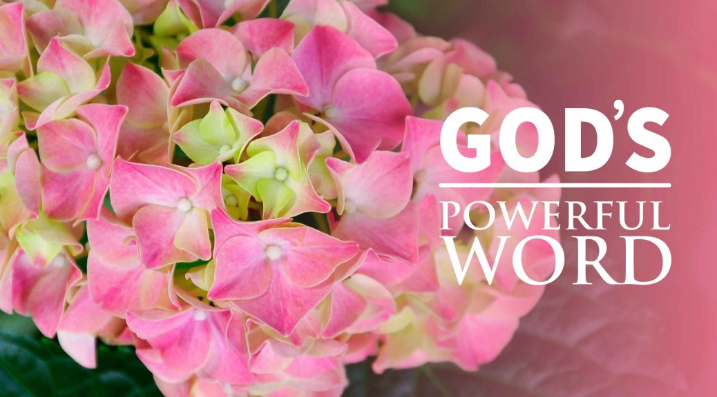 God's Remarkable Word--BlogPostHeader-0001