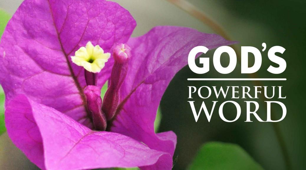 God's Remarkable Word--BlogPostHeader-0002