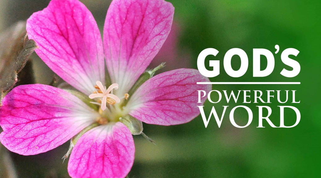 God's Remarkable Word--BlogPostHeader-0003