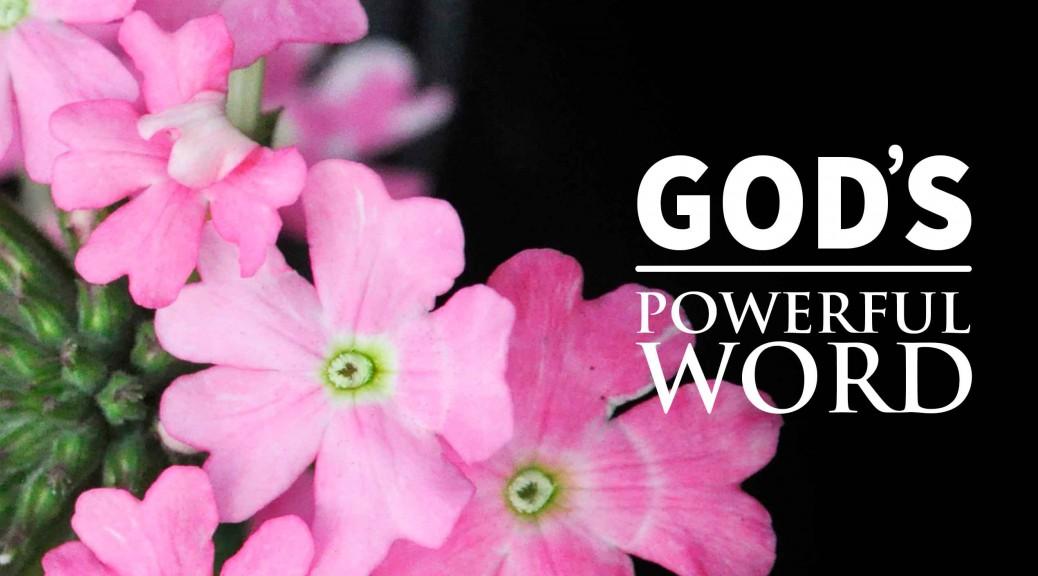 God's Remarkable Word--BlogPostHeader-0005