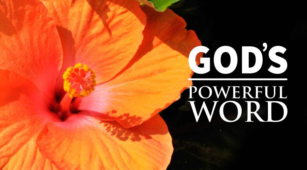 God's Remarkable Word--BlogPostHeader-0009