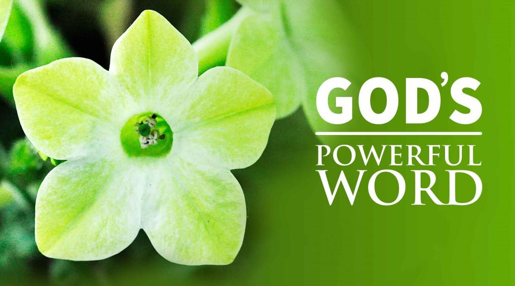 God's Remarkable Word--BlogPostHeader-0010