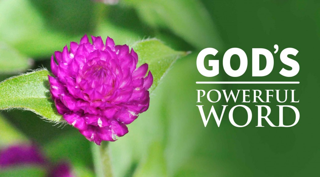 God's Remarkable Word--BlogPostHeader-0014