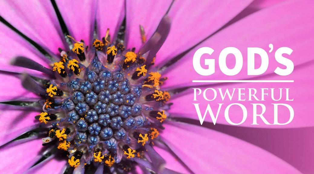 God's Remarkable Word--BlogPostHeader-0015