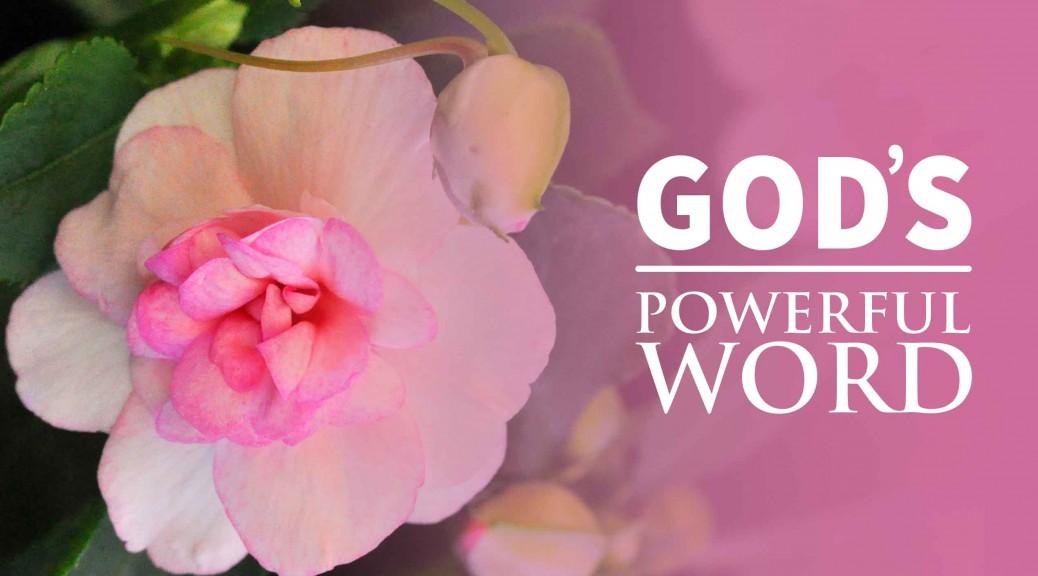 God's Remarkable Word--BlogPostHeader-0017