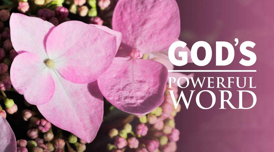 God's Remarkable Word--BlogPostHeader-0018