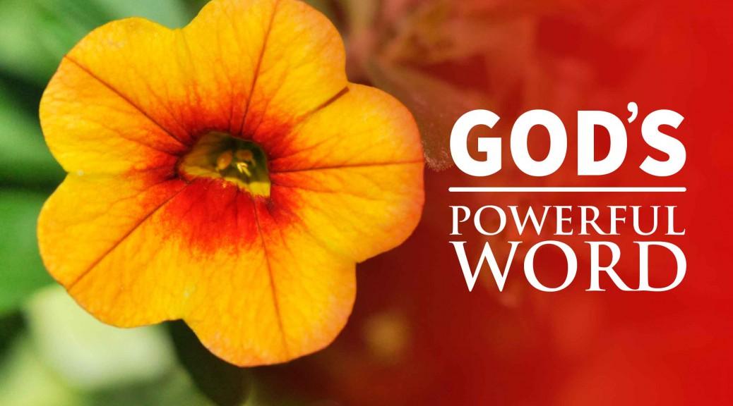God's Remarkable Word--BlogPostHeader-0019