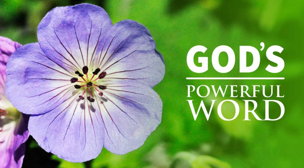God's Remarkable Word--BlogPostHeader-0021