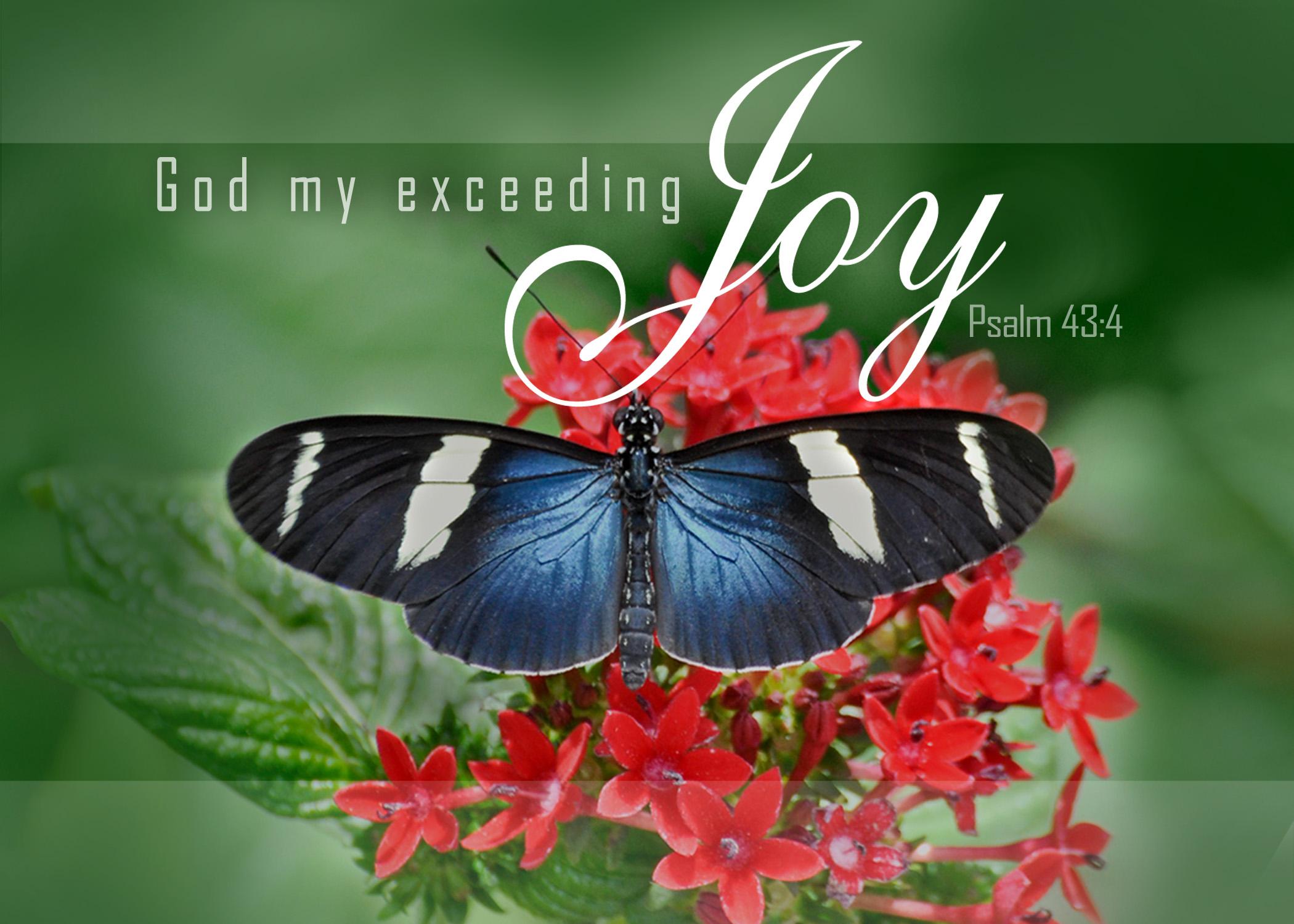 Psalm 43:4-Version 1-Butterfly