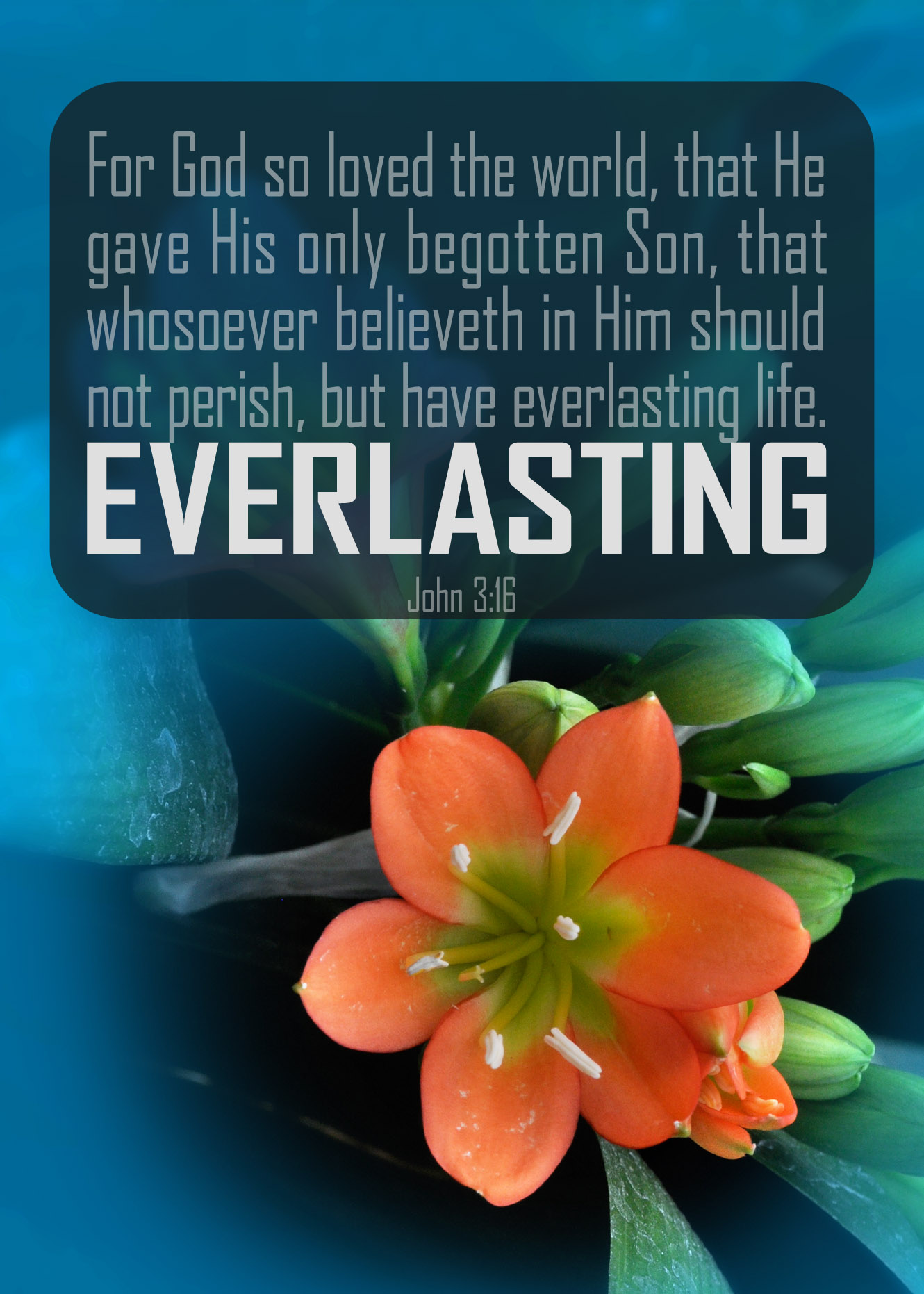 John 3:16–Version 1-Orange Flower