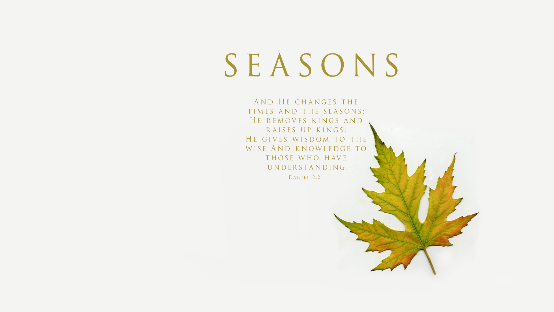 Autumn Leaf–Daniel 2:21–Wallpaper