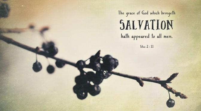 Berries–Titus 2:11–Wallpaper