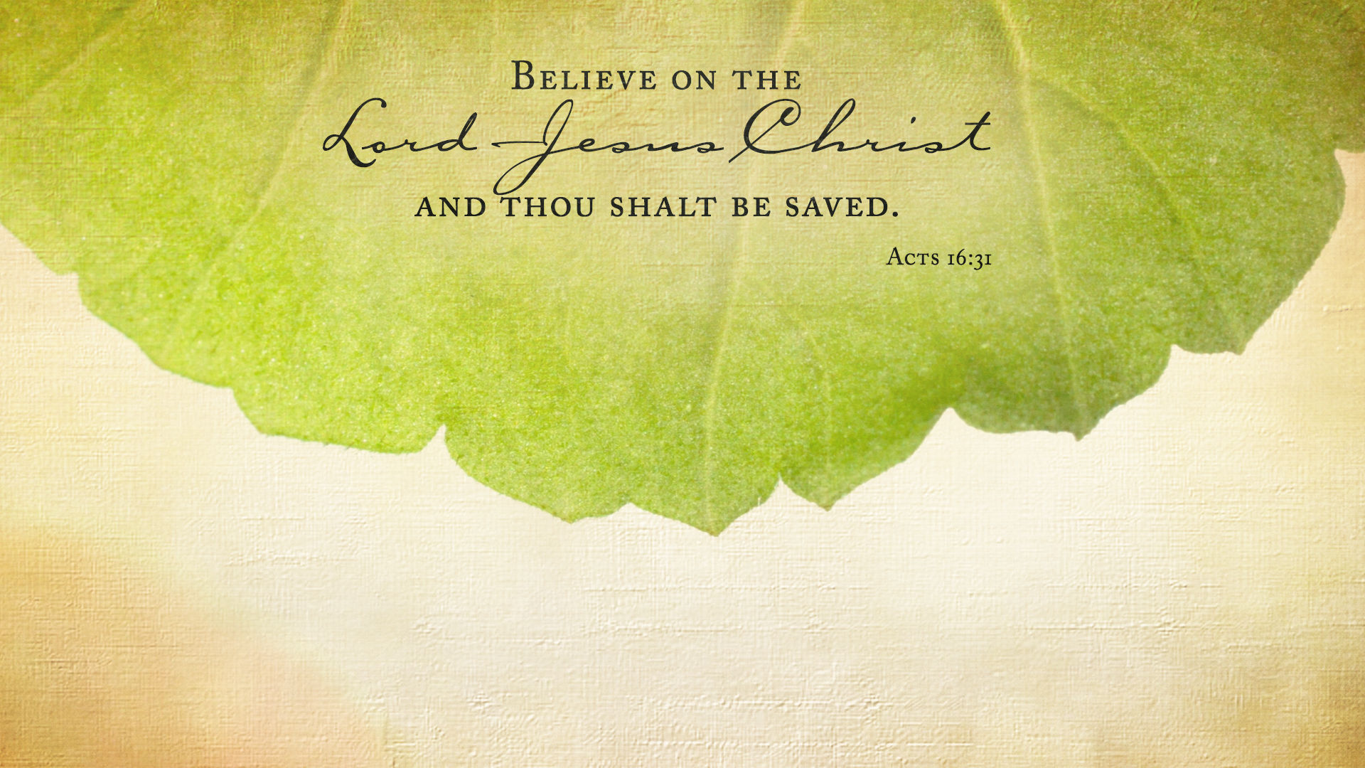 Leaf–Acts 16:31–Wallpaper