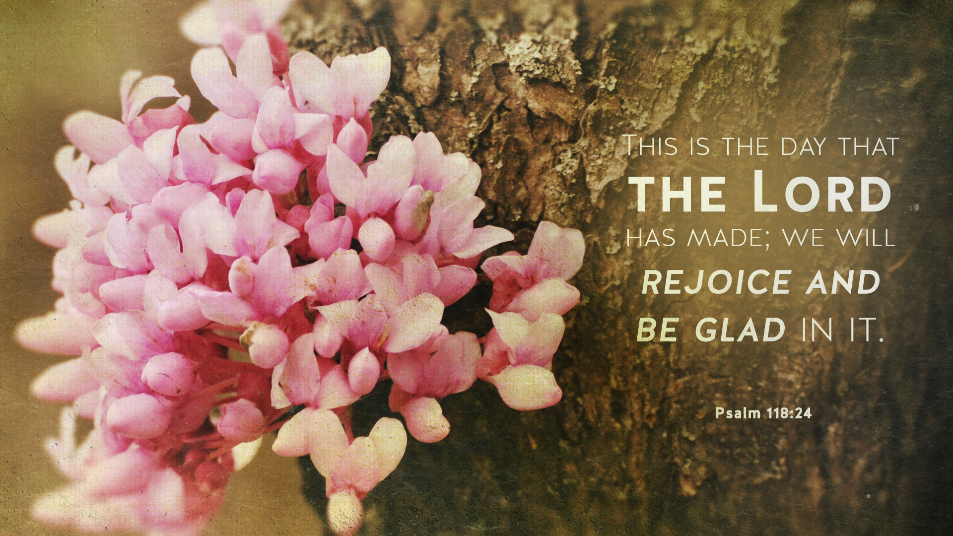 Redbud–Psalm 118:24–Wallpaper