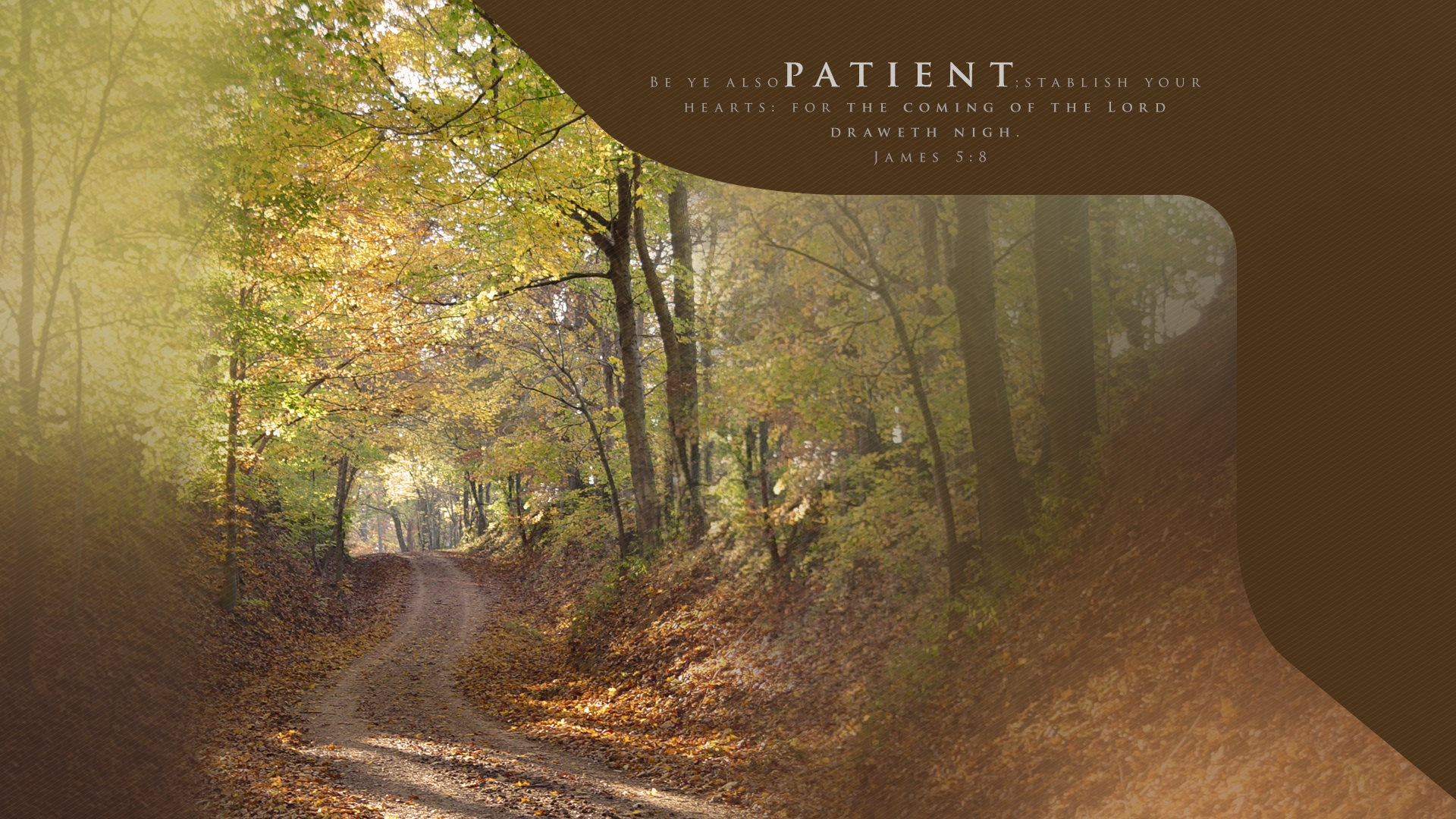 Fall Road–James 5:8–Wallpaper