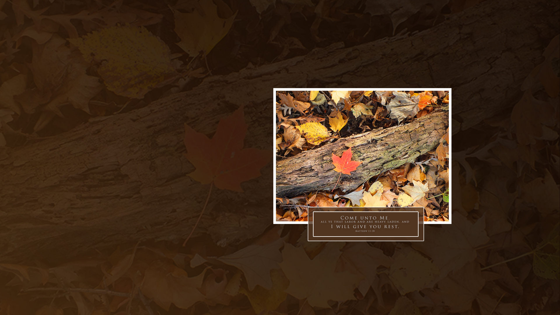 Fall Leaf Log–Matthew 11:28–Wallpaper
