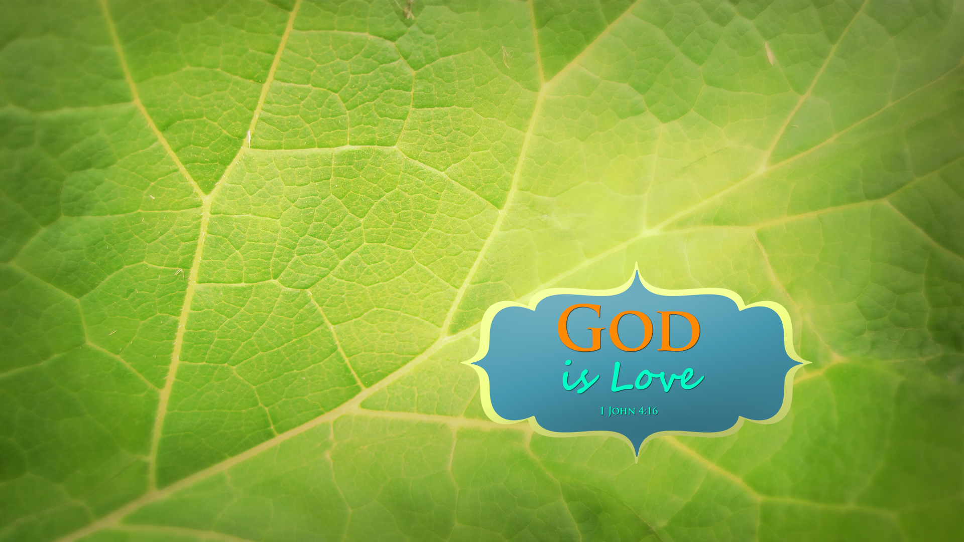 Leaf–1 John 4:16–Wallpaper