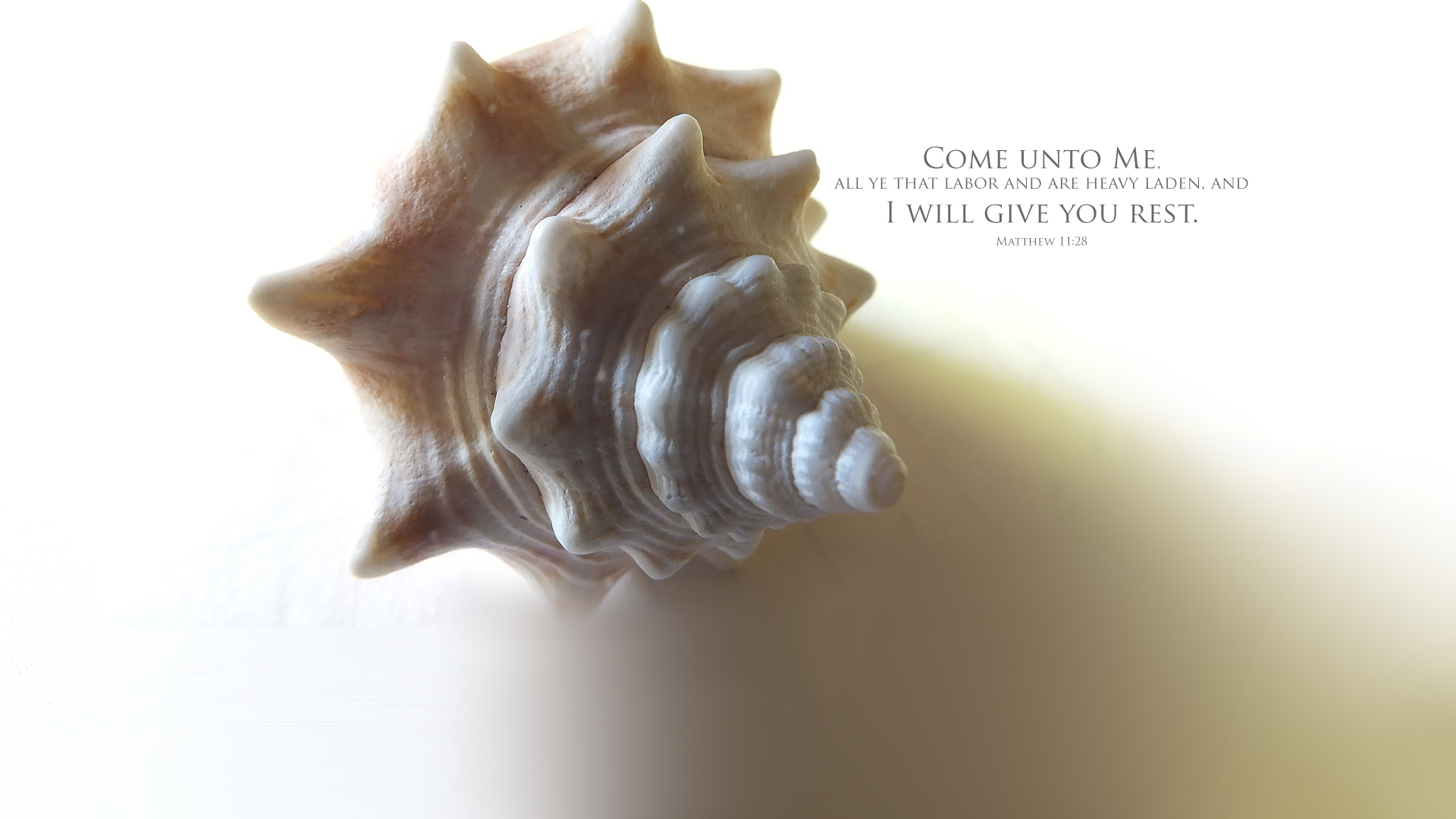 Seashell 2–Matthew 11:28–Wallpaper
