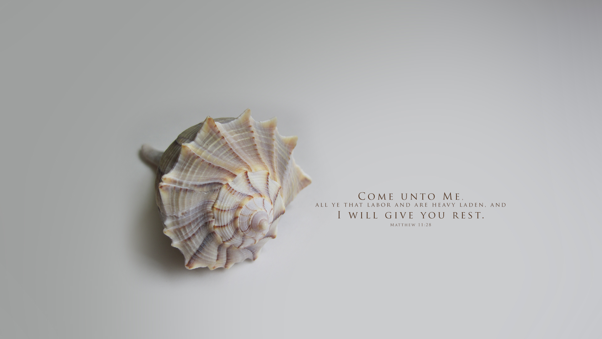 Seashell 1–Matthew 11:28–Wallpaper