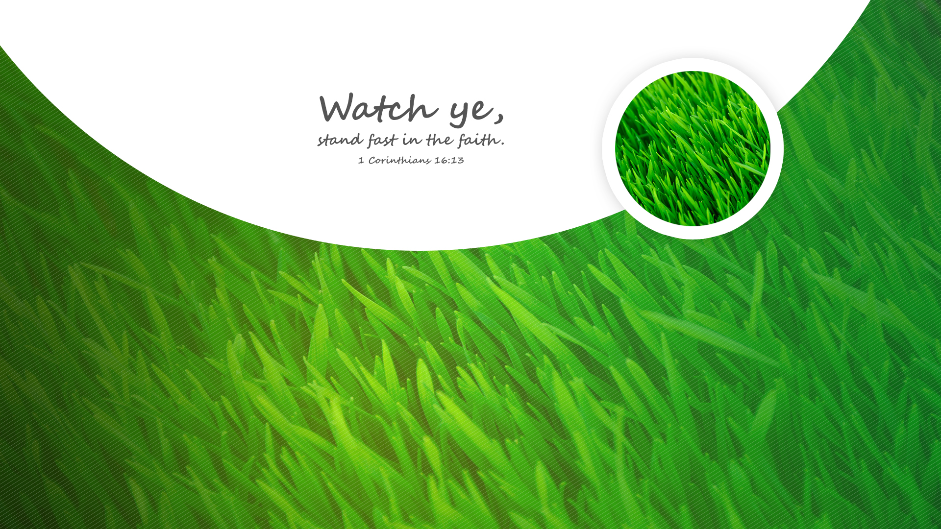 Grass Summer–1 Corinthians 16:13–Wallpaper
