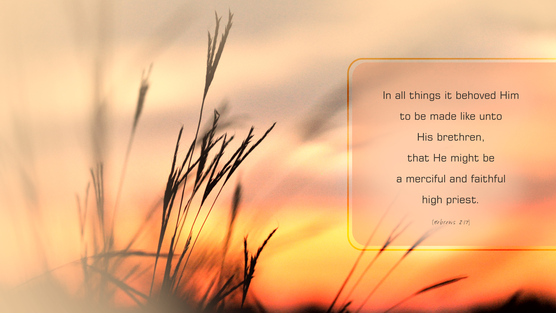 Sunset Grasses–Hebrews 2:17–Wallpaper